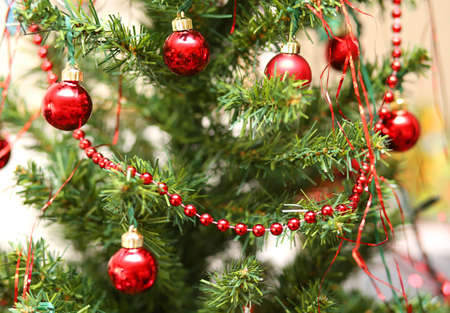 christmas ornamentation: Christmas decorations with red glass balls decorate a large Christmas tree