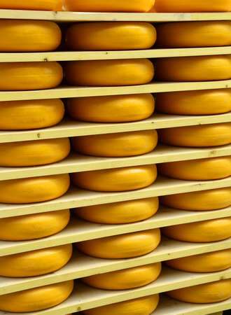 emmental: Emmental cheese during ripening in the dairy mountain