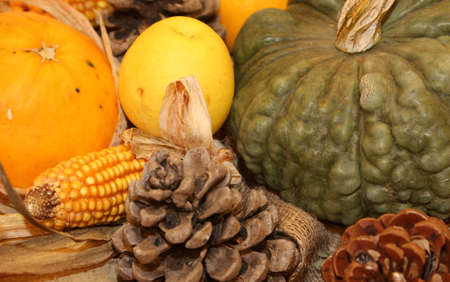 mais: pumpkin and corn and other fresh and dried fruits in autumn season