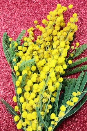 mimose: mucchio di Mimosas giallo per il giorno internazionale della donna con glitter rosso sfondo Archivio Fotografico