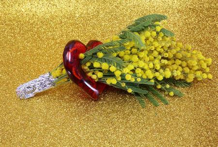 mimose: mucchio di Mimosas in fiore per il giorno internazionale della donna con Golden glitter background Archivio Fotografico