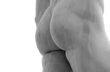 man ass: detail of the butt of the statue of marble with solid buttocks