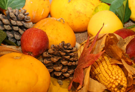 mais: pumpkin and corn mais and other fresh fruits in autumn season