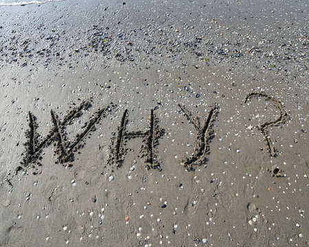 interrogatively: Great WHY written on the sand of the sea