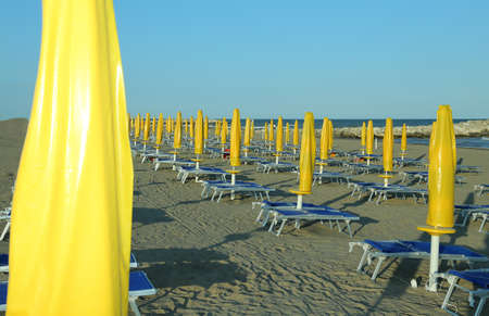 Yellow closed Sun umbrellas  with sun loungers and deckchairs Imagens - 56489279