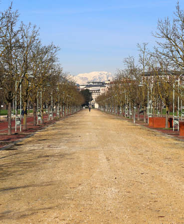 campo: Avenue in the middle of the public park called CAMPO MARZO in the city of Vicenza in Italy