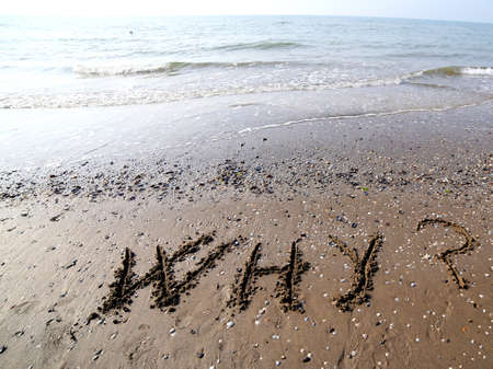 interrogatively: WHY written on the sand of the sea in summer