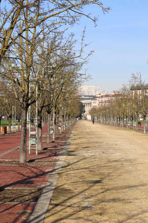 macadam: long Avenue in the middle of the public park called CAMPO MARZO in the city of Vicenza Stock Photo