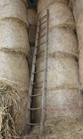 chaff: old wood ladder in the barn of the farm Stock Photo