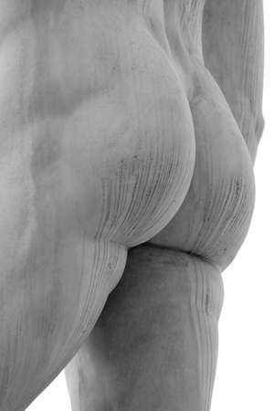 anthropomorphous: ass of the statue of marble with white solid buttocks Stock Photo