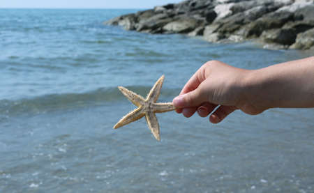 hand of girl holding big starfish close to the sea cliff in summer Stock Photo