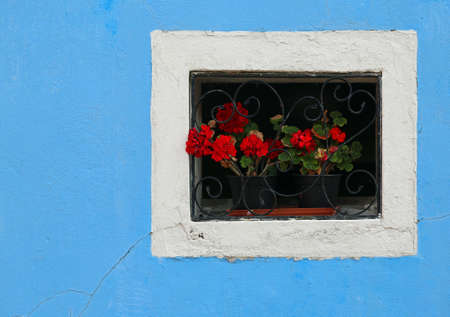 flowered: beautiful flowered balcony with a window in the house and many flower pots