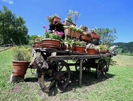carreta madera: muy antiguo vag�n de madera adornada con muchas macetas de flores en el prado en las monta�as Foto de archivo