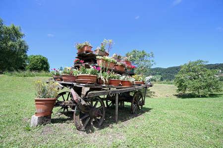 carreta madera: carro de madera adornada con muchas vasijas de lente ojo de pez Foto de archivo