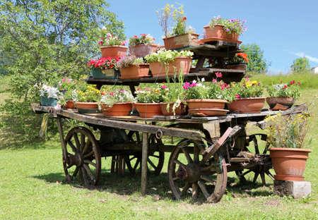 carreta madera: vag�n de madera decoradas con muchas macetas de flores en el prado en las monta�as