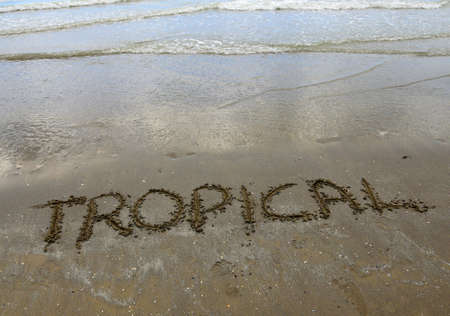 written: tropical big written on the sand