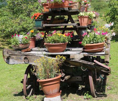 carreta madera: detalle de un viejo vagón de madera con muchas macetas de flores