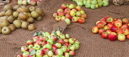 many apples of many type for sale in the grocery with organic products Stock Photo