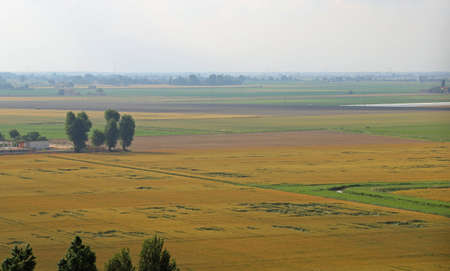 the po valley: Aerial view of the plain with the cultivated fields and crops in the spring Stock Photo