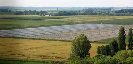 po valley: panorama of cultivated fields in the vast Po Valley in central Italy