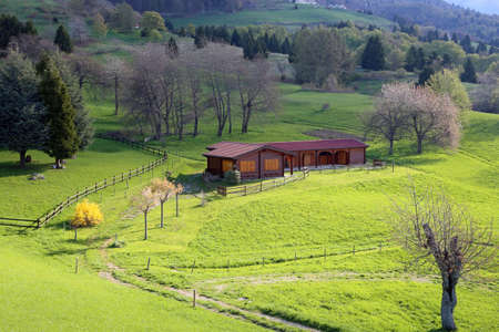 wooden chalet in the middle of the green lawn in the mountains