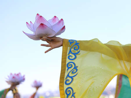 thai dancing: big lotus flowers supported by the hands of the young oriental dancer during a dance performance outdoors