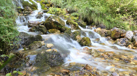 wonderful mountain stream with water that seems in motion photographed with a long exposure time