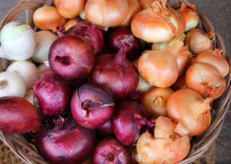 diuretic: Ripe red and yellow onions for sale at the market