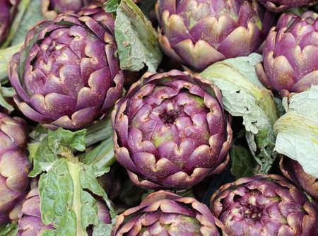 big ripe artichokes grown in the field in Italy for sale in the southern Italian market