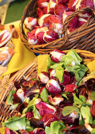 original ecological: wicker basket with radicchio and lettuce grown in an organic garden