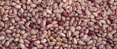 hundreds and thousands: background of thousands of organic beans