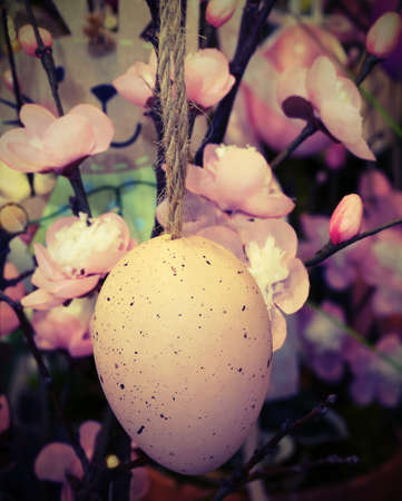 pendent: chicken egg hanging from a peach branch to decorate the house during the Easter celebrations Stock Photo