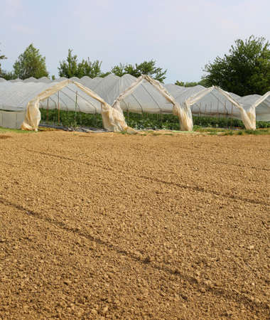 Many large greenhouses for the cultivation of vegetables in the winter and the field with the arid soil