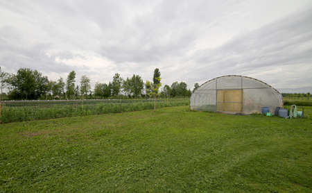 agri: Big greenhouse for the cultivation of vegetables in winter