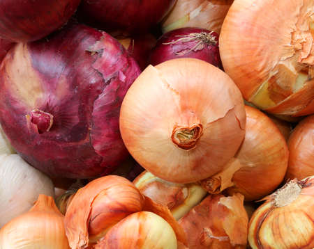 organic Red and white onions for sale by the fruit grower Stock Photo