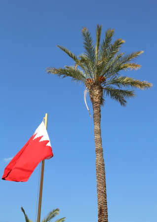 Bahrain flag and a palm tree on background blue sky