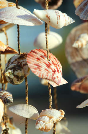 Object with many shells to embellish the house for sale in a souvenir shop Stock Photo