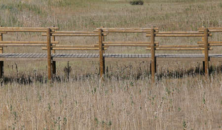 Diving fence in the middle of dry clear in summer