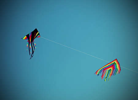 big kites fly high in the blue sky in the summer