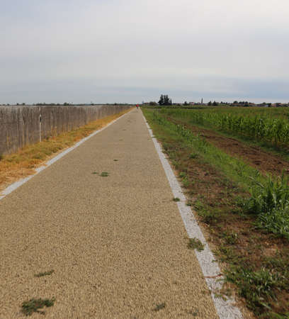 long bike lane in the plain in summer