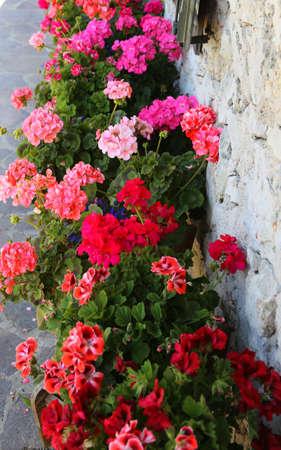 Hof des Hauses, der während der Blütezeit mit so vielen Geranien geschmückt ist