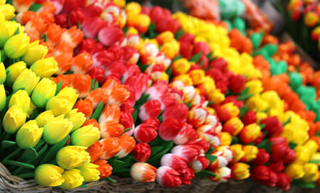 lots of colorful tulips for sale in the flower market Stock Photo