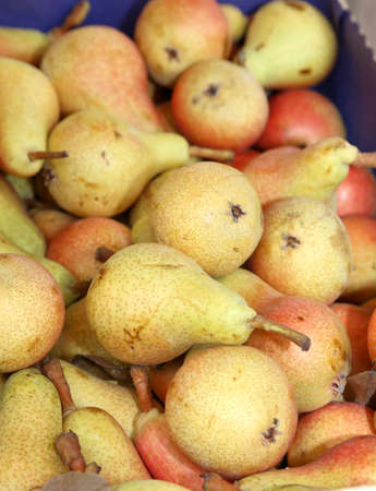 many ripe pears in the box of greengrocer for sale
