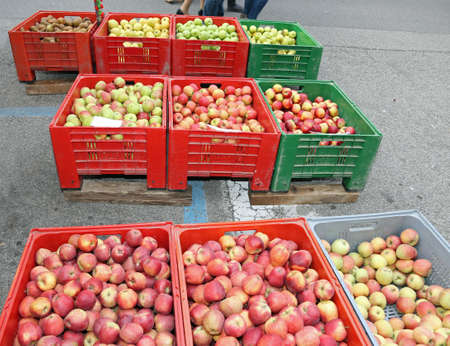 ample: boxes of fruit with the ripe apples for sale at market