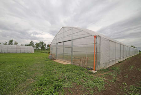Large greenhouse for the cultivation of vegetables in winter