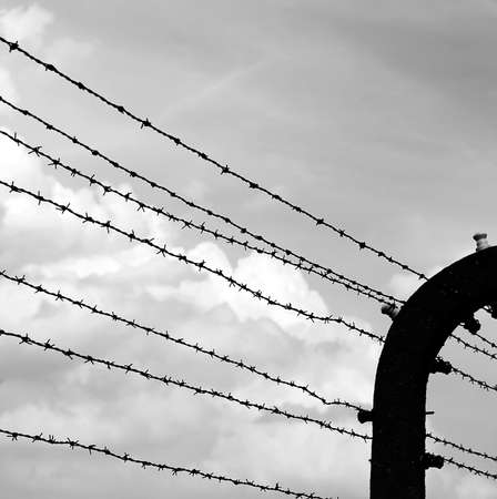 barbed wire with black and white photograph effect