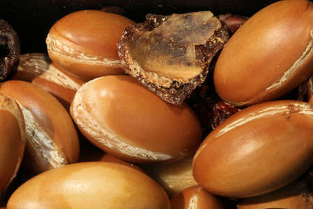 many argan seeds for the production of beauty creams