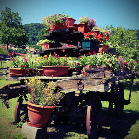 wooden wagon with many pots of flowers in the meadow in the mountains with vintage effect