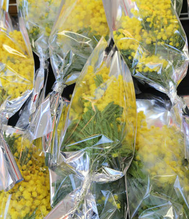 yellow mimosas ready to be given away to women