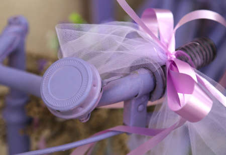 bell of the purple bike with bow